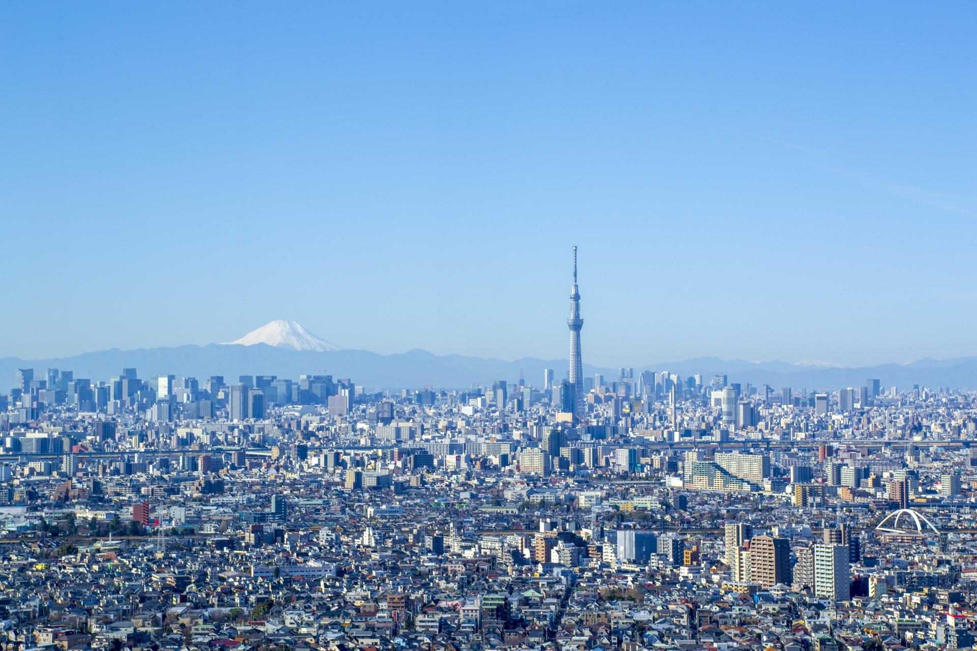 富士山,スカイツリー,東京